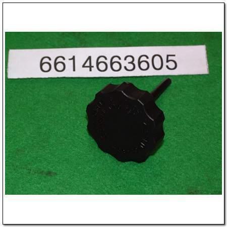 ssangyong 6614663605