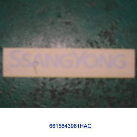 ssangyong 6615843961HAG